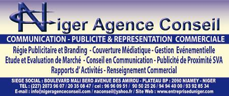NIGER AGENCE CONSEIL