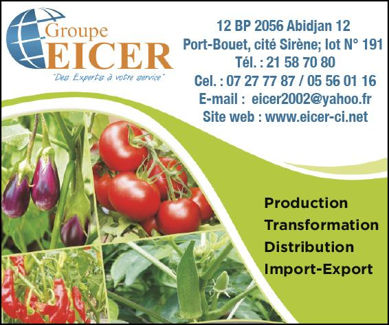 GROUPE EICER