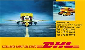 DHL INTERNATIONAL NIGER