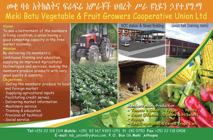 Meki Batu Vegetable & Fruit Growers Cooperative Union Ltd